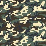Choice of Holster Colors  Woodland M81 / CE Camo Lisse