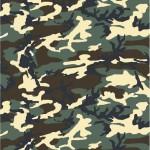 Choix de Coloris du Holster  Woodland M81 / CE Camo Lisse