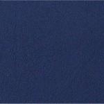 Choix de Coloris du Holster  Blue Police