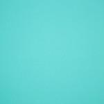 Choix de Coloris du Holster  Tiffany Blue