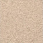 Choix de Coloris du Holster  Desert Tan Brown (très clair)