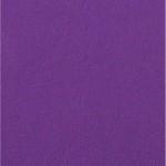 Choix de Coloris du Holster  Purple