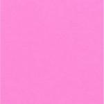 Choix de Coloris du Holster  Neon Pink
