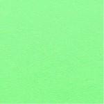Choix de Coloris du Holster  Zombie (Vert Pomme)