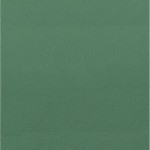 Choix de Coloris SORC  Green Infantery