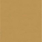 Choix de Coloris SORC  Desert Fox Brown