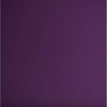 Choix de Coloris SORC  Purple