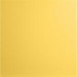 Choix de Coloris SORC  Mustard Yellow