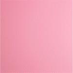 Choix de Coloris SORC  Carbon Fiber Pink